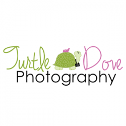 Turtle Dove Photography